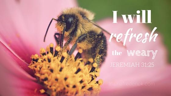 Sometimes You Just Need to Be Renewed Jeremiah 31:25 @AlainaFrederick #Faith